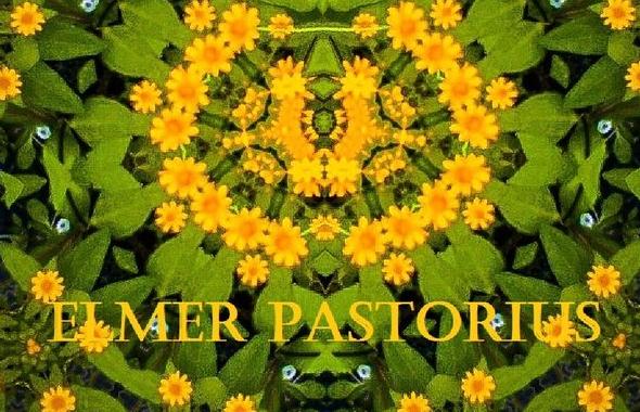 elmerpastorius-cover