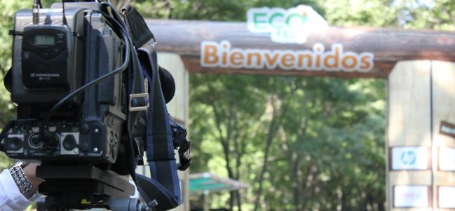 Especial EcoFest: Pañales ecofriendly.