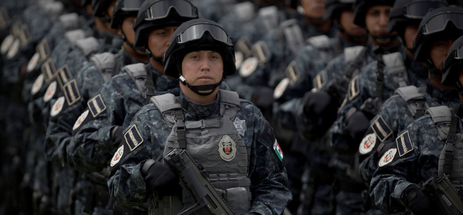 La nueva Gendarmería de la Policía Federal.