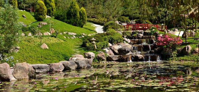 Tiene mexico el jardin mas grande del mundo taringa for Jardines mexico